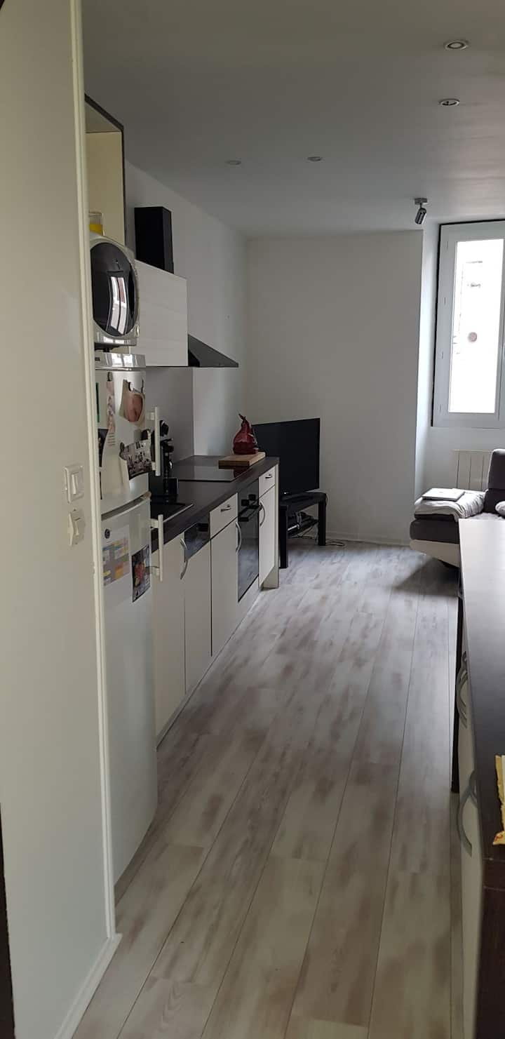 Appartement F3 SAint Galmier