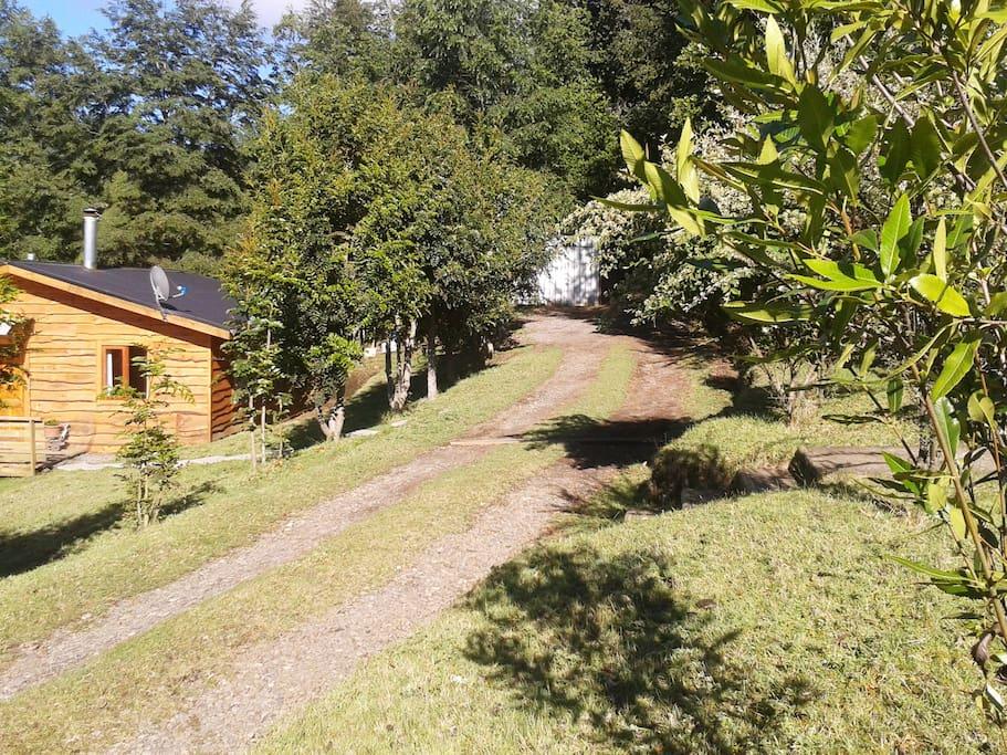 Campo a 4 kms. de Lican Ray, tranquilidad total, entorno muy bello.