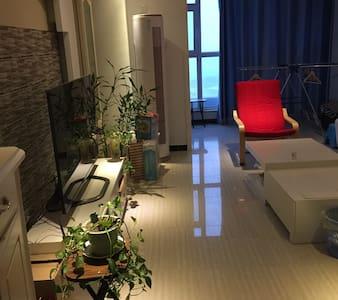 优雅的loft.安静的社区环境。很干净、舒适。 - 北京 - Ev