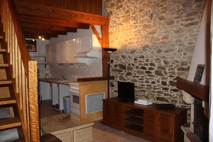 Charmant studio dans grange rénovée - Landeronde - Appartamento