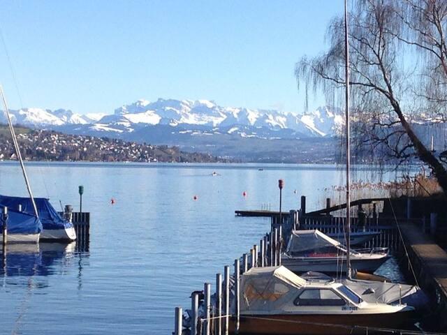 4.5 bedroom apart - Lake/Mount view - Zurich - Apartemen