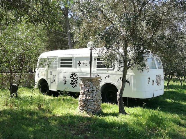 Bus anni '20 - Porto Badisco - Tåg
