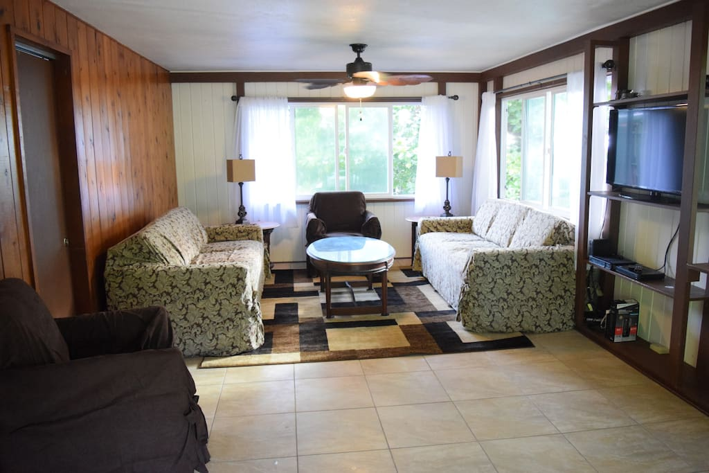 Living Room (with queen size pull out couch)