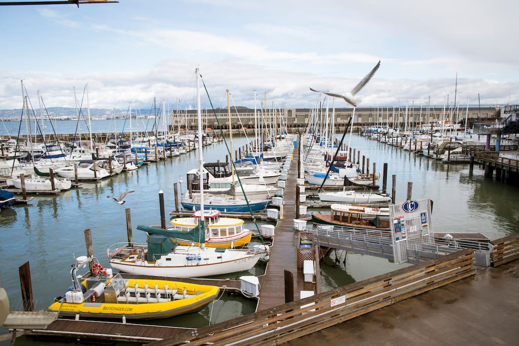 Photo of Fisherman's Wharf in Fisherman's Wharf