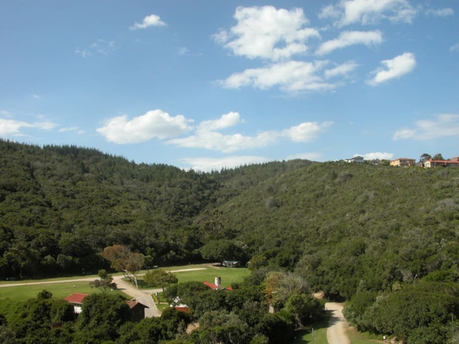 Holiday Accommodation - View
