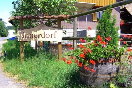 Charming appartment near Lucerne - Grosswangen - 獨棟