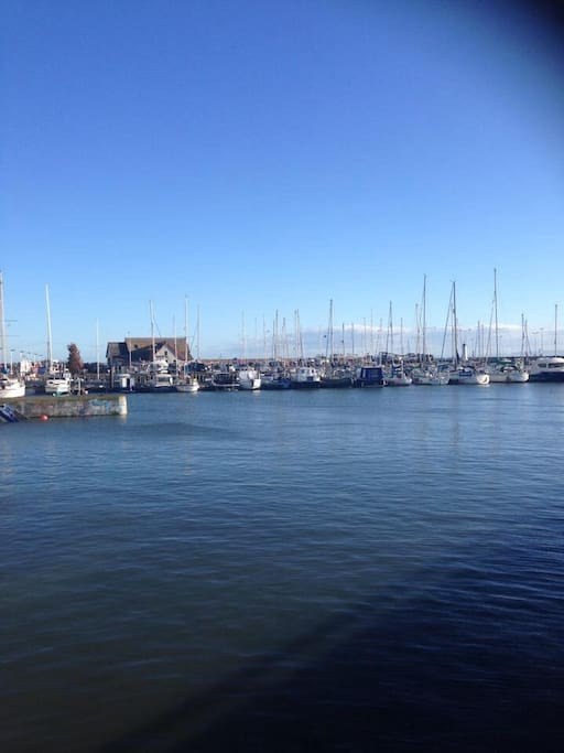 The harbour in Anstruther