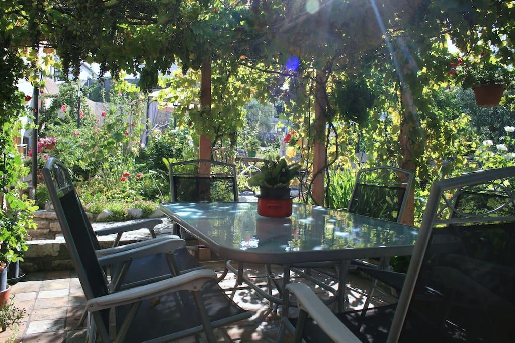 Breakfast and dinner under the vine covered pergola