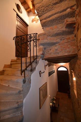 Il Castello degli Spiriti Magni - Grosseto