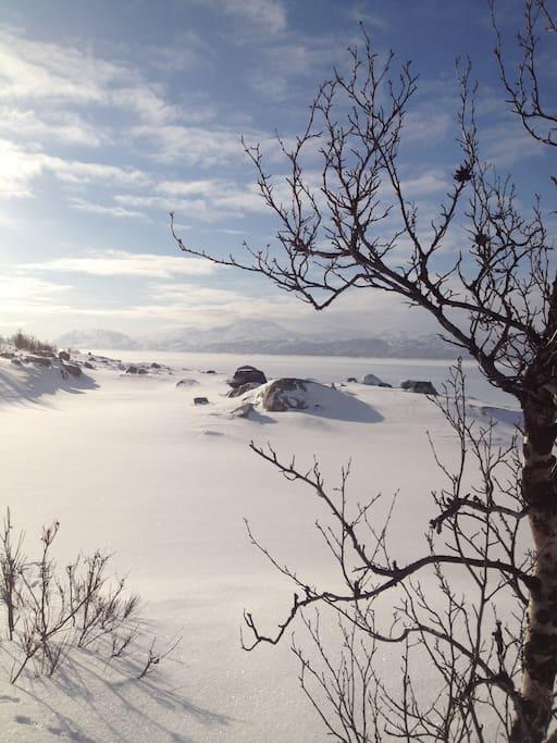 Winter wonderland !