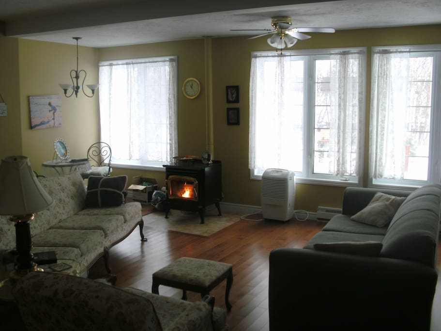 Living room with pellet stove