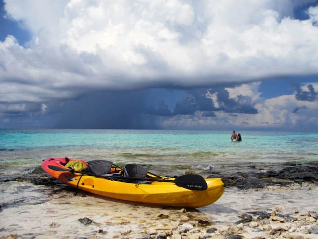The waters around Grand Bahama are perfect for kayaking.