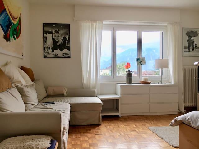 Magnifique appartement 1 pièce au coeur de Vevey