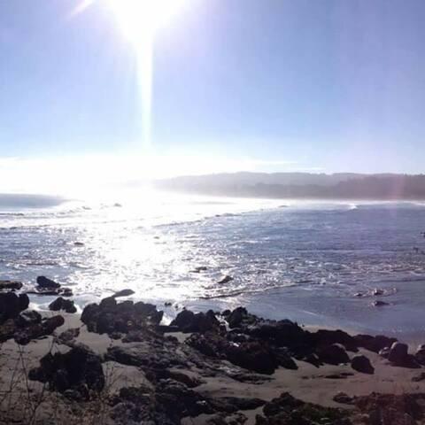 Vista Punta de Lobos