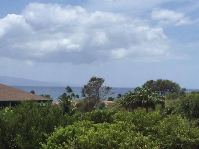 Ocean view Condo 1BD/1BA - Best Deal in Kihei