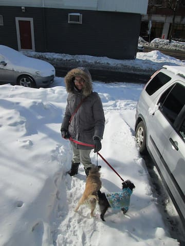 Dorota and the two dogs in snow