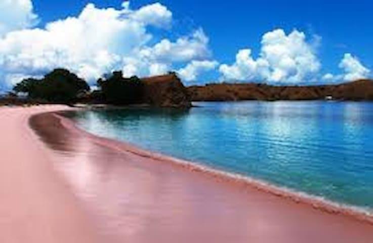 vila di pinggir pantai pink lombok  - Sumbawa - Villa