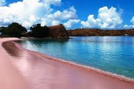 vila di pinggir pantai pink lombok