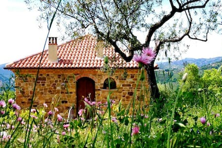 B&B Villa Nigro Country House - Laureana Cilento - Bed & Breakfast