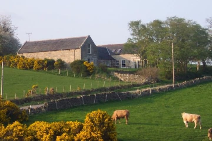 Peaceful rural setting - Monymusk
