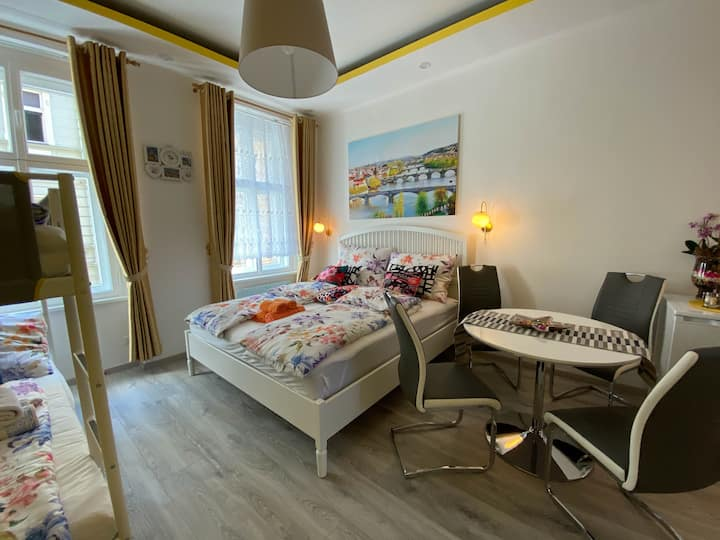 Fully furnished apartment n.4 with free parking
