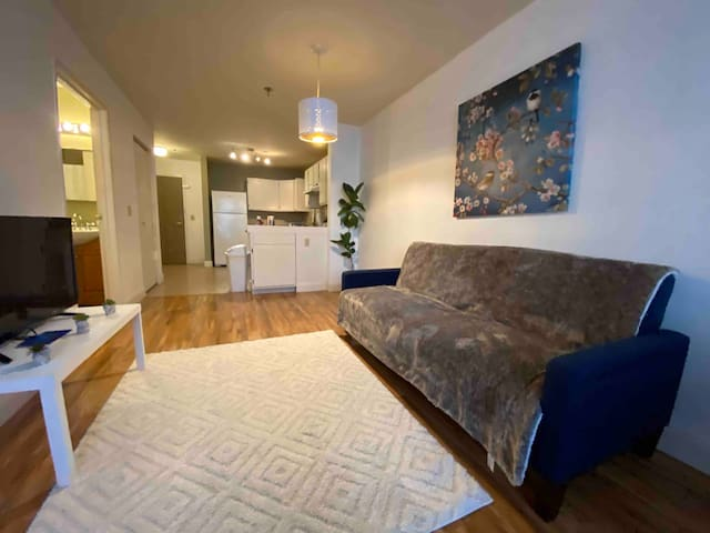 🌟Smart TV Fast Wi-Fi Downtown 1BR Apt with a View