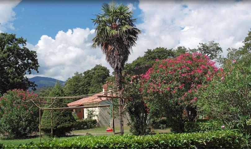 Le Domaine : villa privative  T6 - Santa-Lucia-di-Moriani - Villa