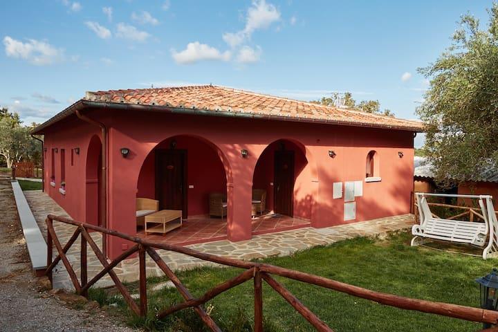 Agriturismo Casalrosso - Monte San Savino - Bed & Breakfast
