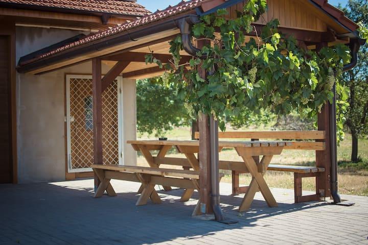 Ubytování mezi vinohrady