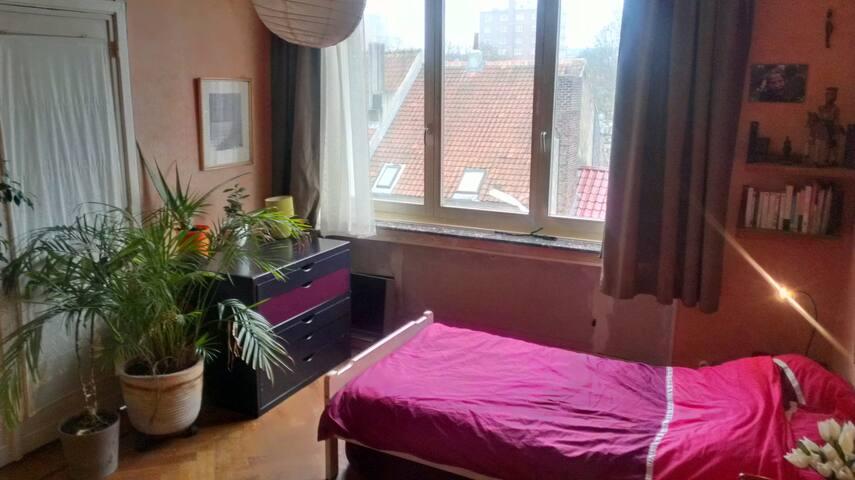 Une grande chambre à deux lits, ensoleillée. - Ixelles - Szoba reggelivel