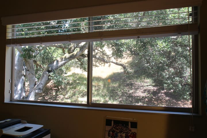 2nd bedroom view to open space & nature