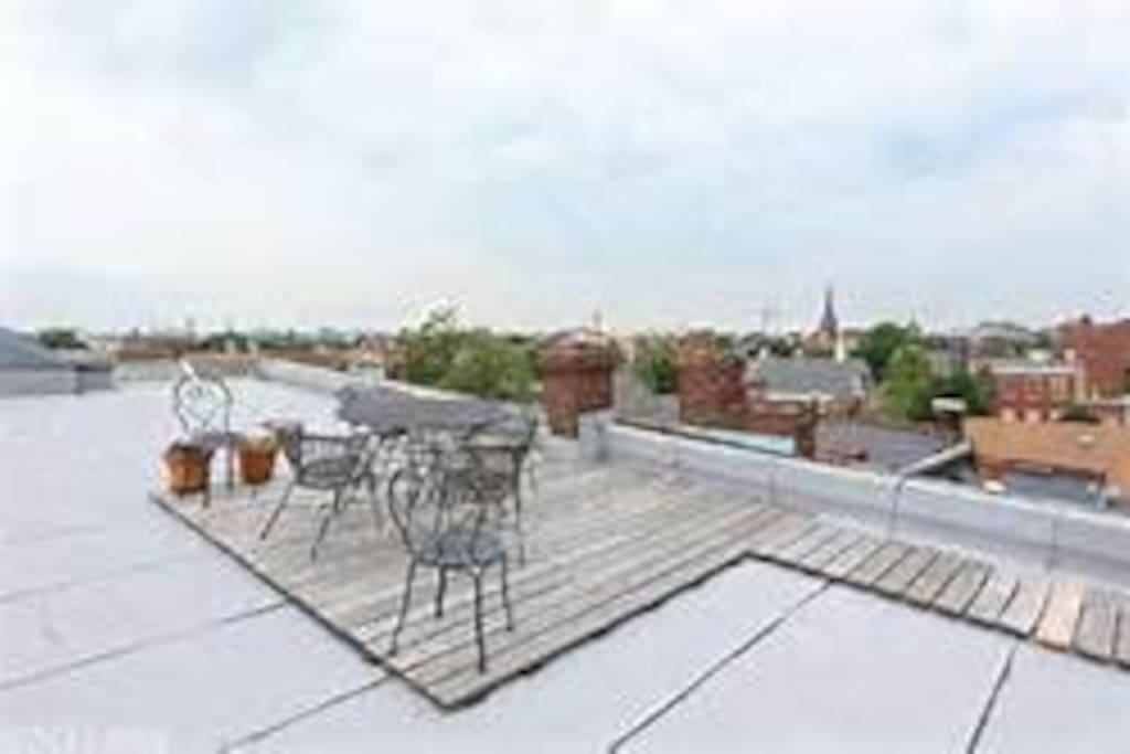 Amazing shared roof deck (use by owner's discretion)