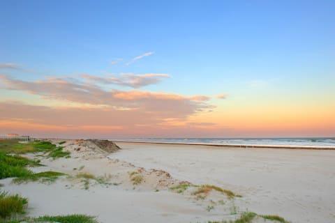 Beach Front Condo In Casa Del Mar