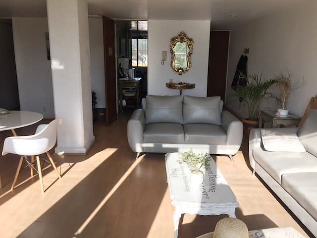Nice Private Room in Condesa - Mexiko-Stadt - Wohnung