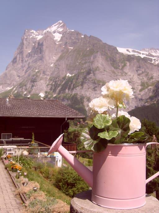 Wunderschöner Bergblick