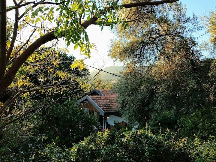Beautifull nature surrounded house