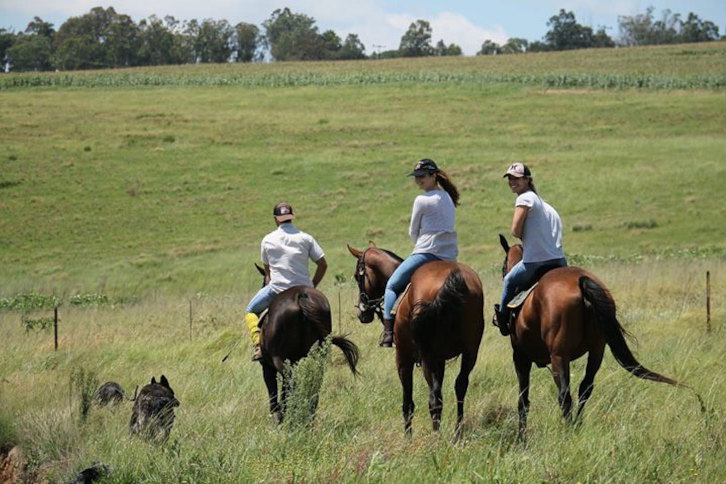 horse ridding available