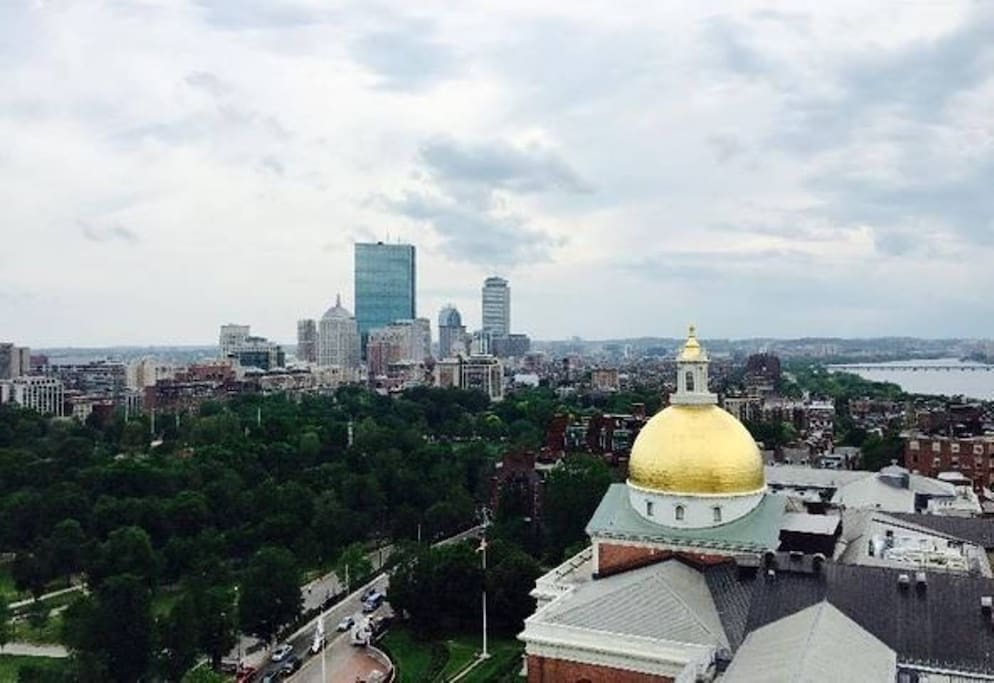 Enjoy the best view of Beacon Hill from the roof deck