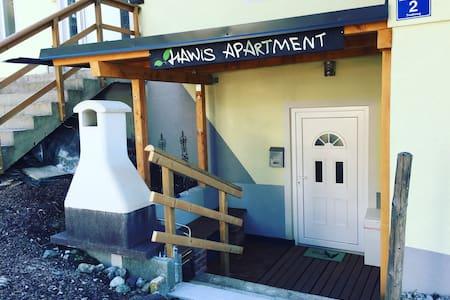 HAWiS gemütliches 4 Rooms Apartment - Maishofen