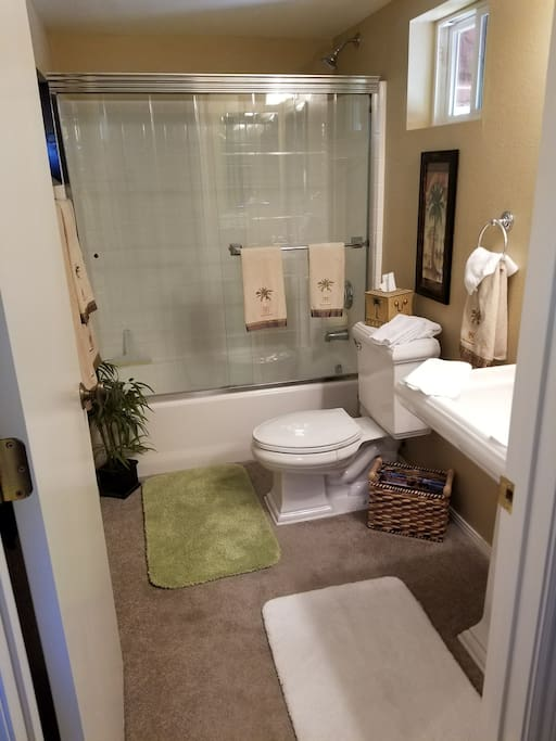 Complete bath, shower and ammenities