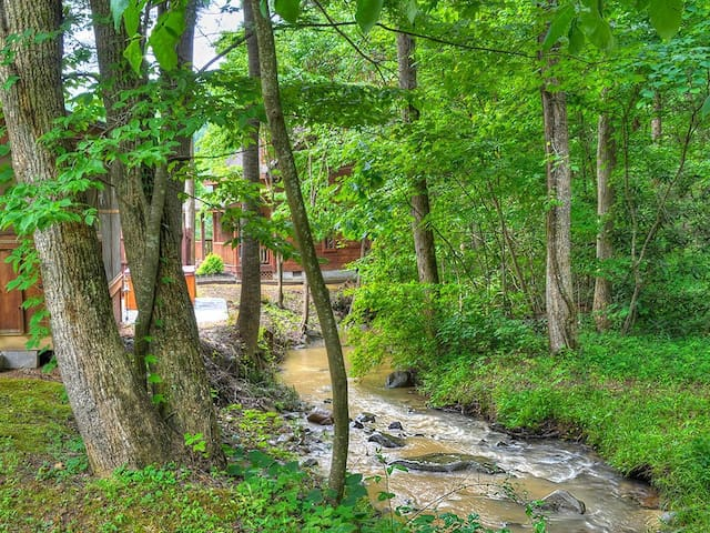 Have coffee next to the babbling creek!  Note: during the summer the creek may be lower or dry up for a bit if it hasn't rained in a while
