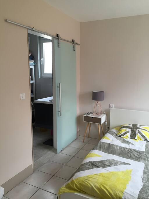 Chambre spacieuse et lumineuse avec salle de bain attenante.