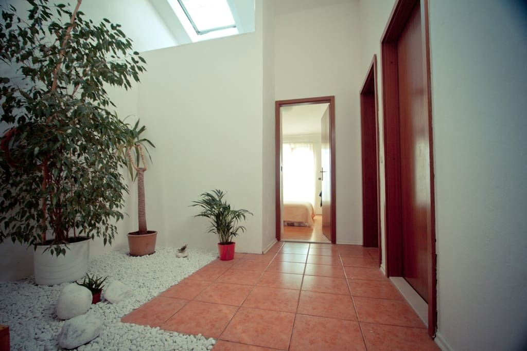 Interior garden in the hallway and roof window makes area always fresh and aired.