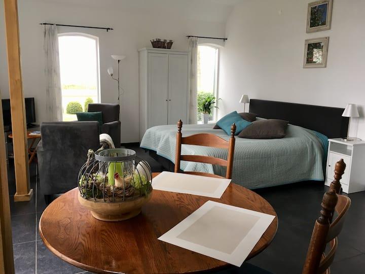 Lichte kamer | Eigen keuken | Badkamer | Terras