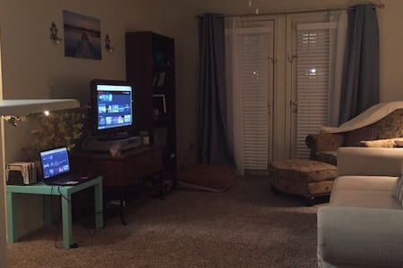 Quiet and clean apartment for 3 - Baton Rouge