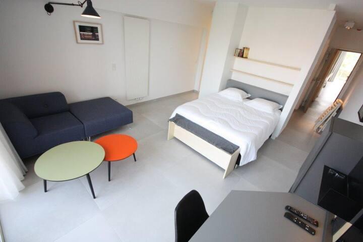 Luxurious & cute studio in the EU district