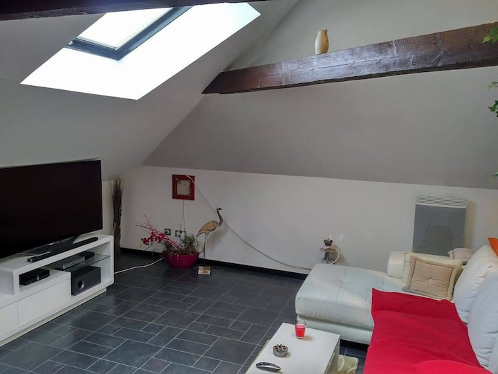 Appartement cosy au centre d'Epernay