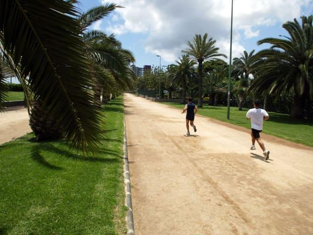 PARQUE ROMANO (RUNNING)