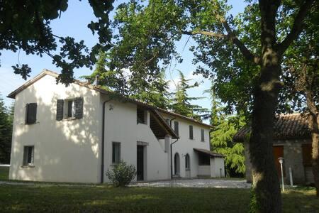 appartamento in casa di campagna - Montecalvo In Foglia