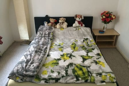 PRIVATE COZY ROOM CENTRAL LONDON - London - House